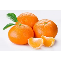Mandarina Clementina, caja de 15 Kg.