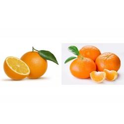 Mixta 10 Kg naranjas para zumo + 5 Kg mandarinas